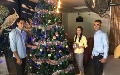 Holiday at the Butterfly Pea